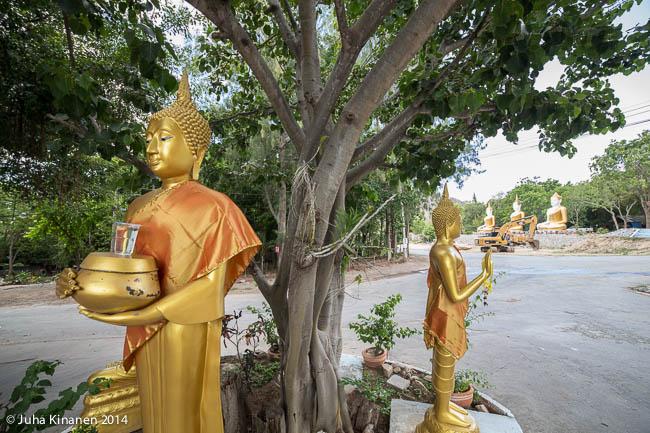 Buddhat ristyksessä