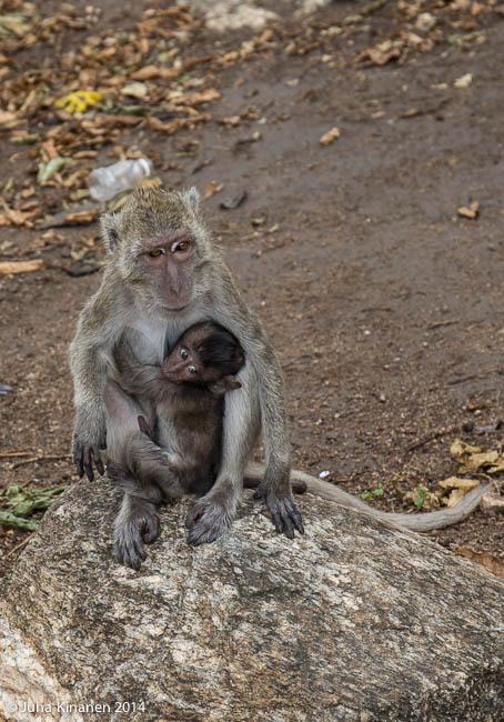 Lapsi ja äiti