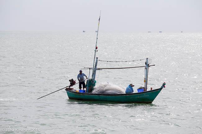 Kalastetaan